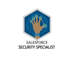 Salesforce Security Specialist